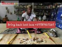 How to Bring Back Your Lost Lover +27787917167